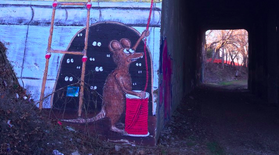 Run the ATL Rat Tunnel